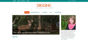 website redesign, Digging Garden Website Redesign