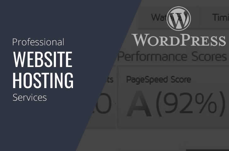 Professional-WordPress-Web-Site-Hosting-Services