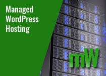 managed-wordpress-hosting-services-in-maryland-virginia-washington-dc-1