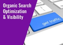 organic-search-engine-optimization-visibility-services-in-rockville-bethesda-frederick-maryland