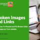 broken links webinar